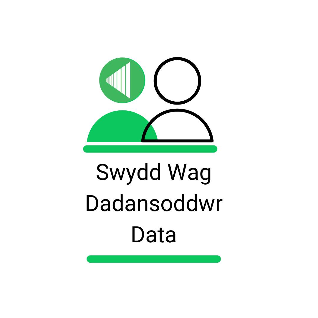 Dadansoddwr Data